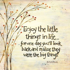 quote-enjoy-the-little-things-in-life-for-one-day-youll-look-back